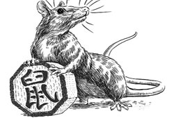 Chinese Zodiac 2017 Rat Predictions