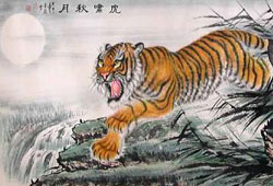 Chinese Zodiac 2017 Tiger Predictions
