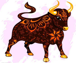 Chinese Zodiac Ox Meaning - What Do You Know about this Animal Sign?