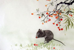 Take a Glimpse of Chinese Zodiac Rat Traits in the Year 2017